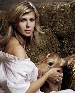 breastfeeding calves animals